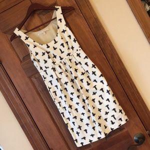 Rachel Roy Office Dress